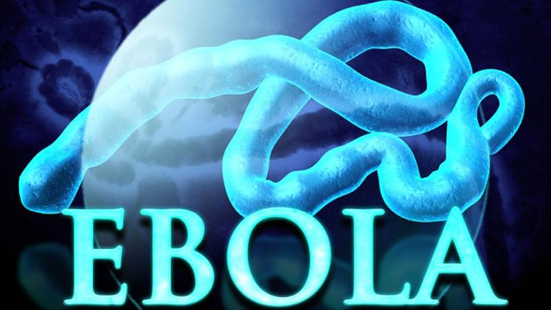 The Outbreak of Ebola